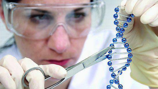 Эксперты составили рейтинг самых главных научных открытий 2017 года