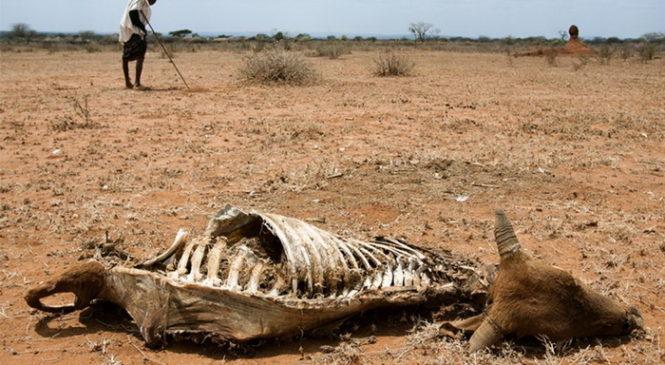 Изменения климата экзоцивилизаций предсказали три пути развития человечества